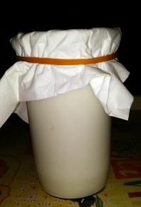 Kefir in fermentazione